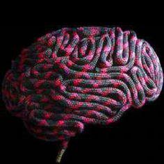 Etat de mon cerveau ?! Et oui, à force ça rentre en toi... Corde, escalade, climbing, brain