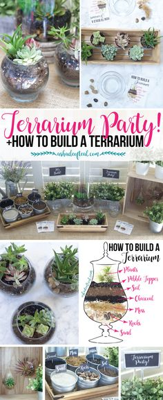 out this Terrarium Party! Plus let your kids make a mess while learning… Check out this Terrarium Party! Plus let your kids make a mess while learning…Check out this Terrarium Party! Plus let your kids make a mess while learning… Decor Terrarium, Build A Terrarium, How To Make Terrariums, Succulent Terrarium Diy, Making A Terrarium, Glass Terrarium Ideas, Terranium Ideas, Best Terrarium Plants, Terrarium Wedding