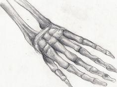 Image result for skeleton drawings on hands