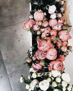 peonies on peonies - inspire | floral arrangements & photography - flower - flowers - pink - white - bulk - flower shop - design - peony - beautiful - rustic - simple - gorgeous - pretty - party - parties - styling - wedding - weddings - idea - aesthetic - ideas - design - inspiration