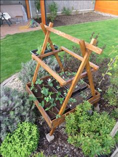 Garden herb stand Herb Garden, Herbs, Herbs Garden, Herb, Medicinal Plants