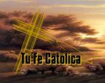 Tu Fe Católica muestra una forma clásica de rezar el Santo Rosario. La manera en que se reza el Santo Rosario, puede variar de acuerdo a la tradición comunitaria de cada sociedad. Lo importante...