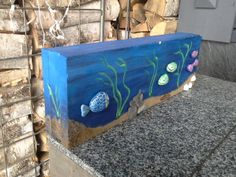 akvaario kahitiilestä