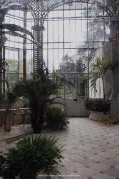 Jardins Albert Kahn, Paris.  Autochrome