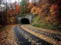 Blue Ridge Parkway ~ Pisgah National Forest, near Asheville, North Carolina