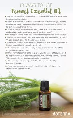 10 Ways to Use Fennel Essential Oil. These are some tips and facts you may not know!