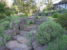 Central OR garden