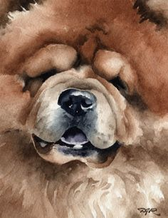 CHOW CHOW Dog Art Print Signed by Artist DJ Rogers by k9artgallery   WATERCOLOR
