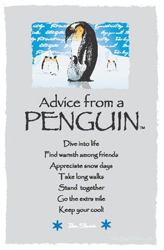 Spirit Totem Animals:  #Advice from a #Penguin.