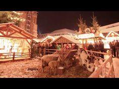 Der wunderschöne Ulmer Weihnachtsmarkt direkt am Fuße des höchsten Kirchturms der Welt. Dieses Jahr wieder vom 25.11. - 22.12.2013