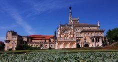 Passe as suas férias de Natal numa das Maravilhas de Portugal | Mealhada | Escapadelas ®