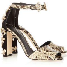 Dolce & Gabbana Embellished python sandals (18 285 UAH) ❤ liked on Polyvore featuring shoes, sandals, heels, sandales, black sandals, black high heel shoes, buckle sandals, ankle strap high heel sandals and heeled sandals