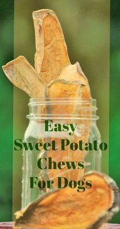 Easy To Make Sweet Potato Dog Chews. Sweet potatoes are packed with vitamins and nutrients and they can be a great, low-fat treat for your dog. They're also super easy to make! #doghealth #lowfat #dogtreats #dogs #pethealth #diy mybrownnewfies.com