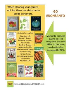 Non-Monsanto seed products... buy these! Pin now read later...
