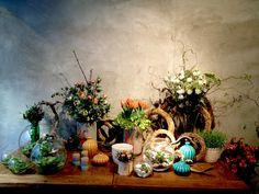 'Tiësto' - AD España, © D.R. Flower shop. Calle Balmes 435. Barcelona 08022 (Zona Sant Gervasi).  Teléfono: 932 530 275.  Horario: de 10:30 a 14h y de 16:30 a 20h (los viernes, hasta las 20:30h).