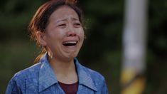 Χρονικό των Θρησκευτικών Διώξεων στην Κίνα «Ποιος Είναι ο Ένοχος;» Vans, Documentary, Van