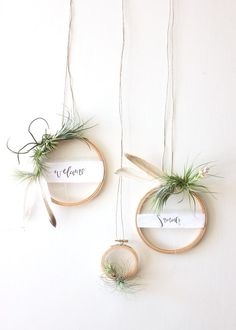 DIY Ideas: DIY Tutorial Summer Air Plant Wreath for Weddings and Cocktail Parties by A Fabulous Fete for Oh So Beautiful Paper - Blumen & Tischdekoration Ideen - Diy And Crafts, Arts And Crafts, Summer Crafts, Fall Crafts, Easter Crafts, Christmas Crafts, Christmas Decorations, Christmas Ring, Christmas Greenery