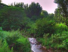 F-10/3, Islamabad. (By www.flickr.com/photos/79658042@N00/)