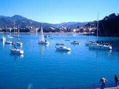 #sestrilevante #maltempo #vento #osservatorioraffaelli– Il maltempo sta mettendo in seria difficoltà i pescatori di Sestri Levante. Lo scrive in una lettera aperta il Presidente dell'Associazione …
