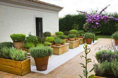 jardim com vasos gilberto elkis - Pesquisa Google