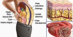 É sempre bom saber como está o funcionamento dos órgãos do nosso corpo.Ir ao médico periodicamente e realizar exames de rotina é muito importante para prevenir e combater problemas de saúde.