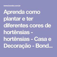 Aprenda como plantar e ter diferentes cores de hortênsias - hortênsias - Casa e Decoração - Bonde. O seu portal