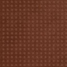 """Carpeting by Shaw Floors in style """"Nottingham"""" color Aged Copper."""