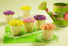 Flower-pot cupcakes...