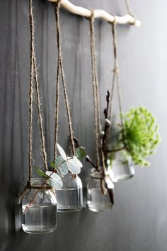 DIY hanging bottle vases