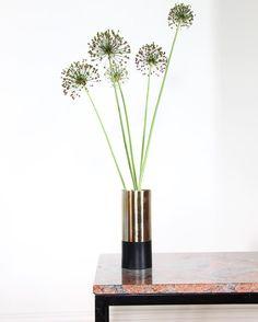 Reporst from @designapartmentsweimar NEW IN: Vase by @hubschinterior  H20cm, ø8cm, 27€ Link im Profil!  #hubschinterior #interiordesign #interior #interiorstyling #decoration #interiores #interieur #interiør #einrichten #wohnidee #homedecor #homestyling #wohnen #styleatmine #thingsilike #styleyourlife #interior444 #interior123 #hübsch #flowerpot #vase #minimal #minimalism #scandinaviandesign #scandistyle #interiorinspo #homesweethome #designwelove #designapartmentsweimar