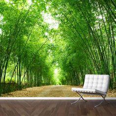 Adesivo Decorativo - Adesivo de Parede: Painel Estrada de Eucalipto - Deccolar Adesivos Decorativos