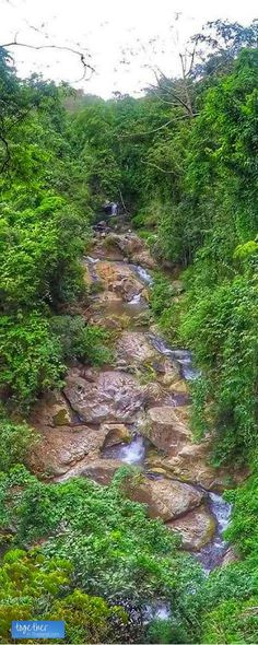 Quick day trips to Chiang Mai's waterfalls are some of the best things to do while in Thailand. Mae Sa Waterfall is a fast motorbike ride away from the Old City and you can picnic, hike, and swim! https://togethertowherever.com/valentines-day-at-mae-sa-waterfalls-in-chiang-mai/