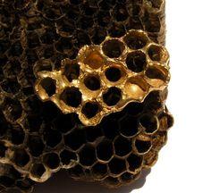 Golden Honeycomb ring Bee hive Wasp Nest Ooak Metalwork Bronze and 14kt vermeil