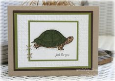 Just for You turtle by taylorsil - Cards and Paper Crafts at Splitcoaststampers  Natures Nest Set