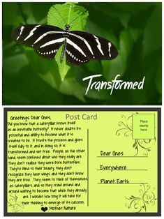 Posts about Post Cards from Mother Nature written by LyndaA Mama Quotes, Trust The Process, Inevitable, Mother Nature, Did You Know, Plant Leaves, Post Card, Affirmations, Cards