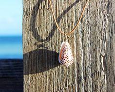 cone shell necklace hawaiian cone shell flea cone shell seashell necklace leather necklace shell choker beachy choker leather choker beachy