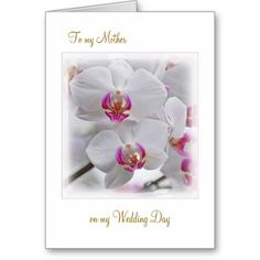 >>>Coupon Code          White Orchids - Thank you Mother for my Wedding Greeting Card           White Orchids - Thank you Mother for my Wedding Greeting Card This site is will advise you where to buyDiscount Deals          White Orchids - Thank you Mother for my Wedding Greeting Card Online...Cleck Hot Deals >>> http://www.zazzle.com/white_orchids_thank_you_mother_for_my_wedding_card-137641112779433870?rf=238627982471231924&zbar=1&tc=terrest