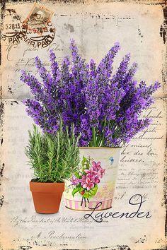 Details about Vintage Image Shabby Labels Lavender Flowers Grunge Waterslide Dec. Decoupage Art, Decoupage Vintage, Vintage Diy, Vintage Labels, Vintage Cards, Vintage Paper, Vintage Postcards, Printable Vintage, Vintage Pictures