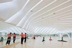 Gallery - Guangzhou Opera House / Zaha Hadid Architects - 4