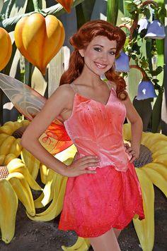 Halloween Fairy, Halloween Cosplay, Halloween Costumes, Halloween 2020, Tinkerbell, Disney Fairies, Disney Princesses And Princes, Disney Princess Dresses, Pocket Princesses
