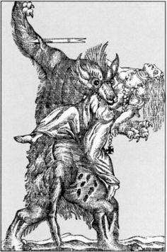 Werewolf (the not the kind that fights with sparkly blood drinkers)