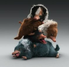 A snug pile of baby Nifflers from the film Fantastic Beasts: The Crimes of Grindelwald by Christian Manz Harry Potter Magic, Harry Potter Love, Harry Potter Universal, Harry Potter Memes, Magical Creatures, Fantasy Creatures, Fans D'harry Potter, Beast Wallpaper, Beast Creature