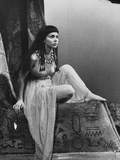 Egyptian Queen, Egyptian Goddess, Egyptian Art, Old Photos, Vintage Photos, Susan Strasberg, Caesar And Cleopatra, Arte Cholo, Chica Punk