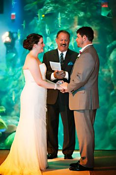 Wedding at The Florida Aquarium|Photographer:  Limelight Photography