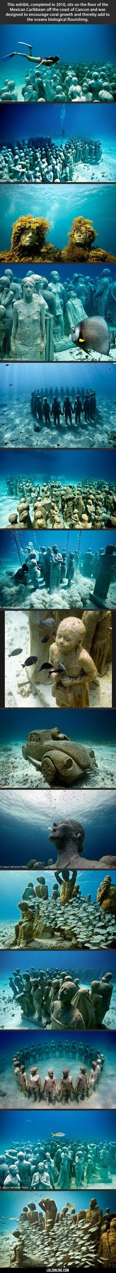 Awesome Underwater Museum #lol #haha #funny #scubadivingquotesunderwater