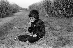 1979. Boy, aged about 8, in a sugar cane field, playing the harmonica, in a JPS (cigarette brand) jacket, in South Africa, with a Cape white-eye on his hand. (8thunder8 on imgur)