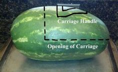 How to Make a Watermelon Baby Carriage: A Step-by-Step Guide ...