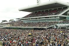 MELBOURNE CUP DAY 2009