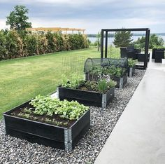Raised Garden Beds Ideas — Photos) The Best landscape Design Backyard Vegetable Gardens, Veg Garden, Vegetable Garden Design, Outdoor Gardens, Pallets Garden, Raised Garden Beds, Garden Planning, Garden Projects, Backyard Landscaping