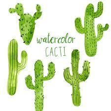 watercolor cactus download에 대한 이미지 검색결과